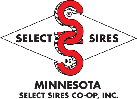 MN Select Sires